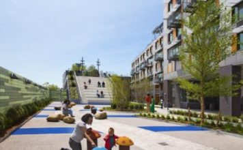 green roof image