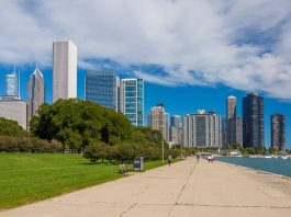 """License: CC0 Public Domain Petr Kratochvil has released this """"Chicago Downtown"""" image under Public Domain license. It means that you can use and modify it for your personal and commercial projects."""